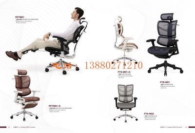 人体工学椅电脑椅-家用 转椅老板椅子-护腰办公椅电竞椅